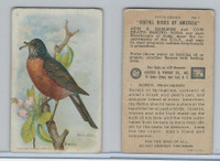 J9-1, Church & Dwight, Useful Birds America 5th Ser., 1925, #1 Robin