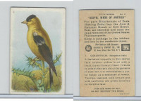 J9-1, Church & Dwight, Useful Birds America 5th Ser., 1925, #2 Goldfinch