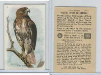 J9-1, Church & Dwight, Useful Birds America 5th Ser., 1925, #3 Red-tailed Hawk