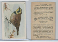 J9-1, Church & Dwight, Useful Birds America 5th Ser., 1925, #7 Horned Lark