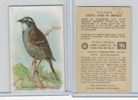 J9-1, Church & Dwight, Useful Birds America 5th Ser., 1925, #8 White-t Sparrow