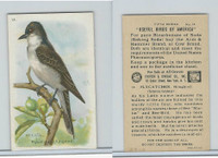 J9-1, Church & Dwight, Useful Birds America 5th Ser., 1925, #14 Flycatcher