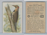 J9-2, Church & Dwight, Useful Birds America 6th Ser., 1925, #1 Flicker
