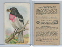 J9-2, Church & Dwight, Useful Birds America 6th Ser., 1925, #14 Rose-b Grosbeak