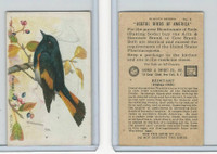 J9-4, Church & Dwight, Useful Birds America 8th Ser., 1925, #6 Redstart