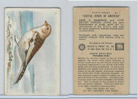 J9-4, Church & Dwight, Useful Birds America 8th Ser., 1925, #7 Snow Bunting