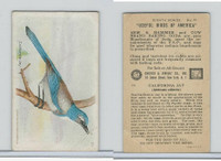 J9-4, Church & Dwight, Useful Birds America 8th Ser., 1925, #10 California Jay
