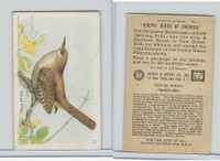 J9-4, Church & Dwight, Useful Birds America 8th Ser., 1925, #11 House Wren