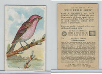 J9-4, Church & Dwight, Useful Birds America 8th Ser., 1925, #14 Purple Finch