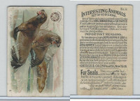 J10, Church & Dwight, Interesting Animals, 1897, #8 Fur Seals