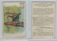 J13, Church & Dwight, Champion Dog Series, 1902, #1 Airedale Terrier