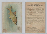J15, Church & Dwight, Fish Series, 1900, #4 Golden Shiner