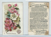 J16, Church & Dwight, Beautiful Flowers, 1895, #16 Peach & Pear Blossoms