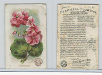 J16, Church & Dwight, Beautiful Flowers, 1895, #49 Geranium