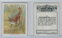 C1 Imperial Tobacco, Birds, Beasts, & Fishes, 1923, #4 Common Fox
