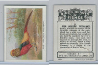 C1 Imperial Tobacco, Birds, Beasts, & Fishes, 1923, #17 Golden Pheasant