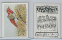 C1 Imperial Tobacco, Birds, Beasts, & Fishes, 1923, #23 King Bird Paradise
