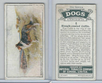 C8 Imperial Tobacco Company, Dog 2nd Series, 1920's, #6 Rough Coated Collie