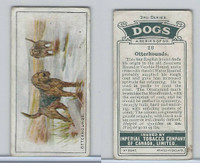 C8 Imperial Tobacco Company, Dog 2nd Series, 1920's, #20 Otterhound