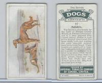 C8 Imperial Tobacco Company, Dog 2nd Series, 1920's, #27 Salukis