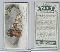 C8 Imperial Tobacco Company, Dog 2nd Series, 1920's, #37 King Charles Spaniel