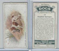 C8 Imperial Tobacco Company, Dog 2nd Series, 1920's, #38 English Springer
