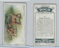 C8 Imperial Tobacco Company, Dog 2nd Series, 1920's, #44 Irish Terriers