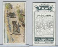 C8 Imperial Tobacco Company, Dog 2nd Series, 1920's, #45 Scottish Terriers