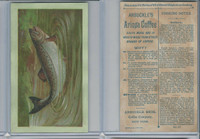 K2 Arbuckle Coffee, Subjects On Cooking, 1890, #41 Salmon
