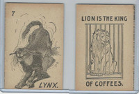 K Card Lion Coffee, Old Maid Card Game Animals, 1890, #7 Lynx