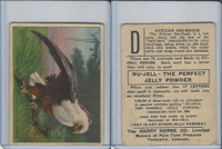 FC1, Harry Horne Co, Nu-Jell, Animals And Birds, 1925, African Sea Eagle