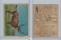 FC1, Harry Horne Co, Nu-Jell, Animals And Birds, 1925, Common Kudu