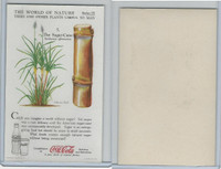 F213-3 Coca Cola, Nature Study, Trees & Plants, 1920's, #5 Sugar Cane
