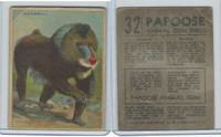 V255 Canada Chewing Gum, Papoose Animal Gum, 1935, #32 Mandrill