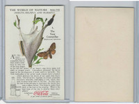 F213-3 Coca Cola, Nature Study, Insects, 1920's, #5 Tent Caterpillar