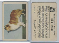 F279-5 Quaker, Challenge of the Yukon, Dog Cards, 1950, Collie