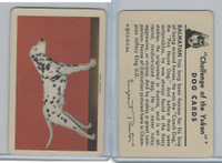 F279-5 Quaker, Challenge of the Yukon, Dog Cards, 1950, Dalmatian