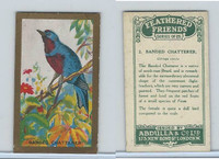 A5-14 Abdulla, Feathered Friends, 1935, #2 Banded Chatterer