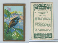 A5-14 Abdulla, Feathered Friends, 1935, #12 Orange Rumped Tanager