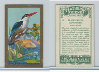 A5-14 Abdulla, Feathered Friends, 1935, #18 Black Capped Kingfisher