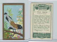 A5-14 Abdulla, Feathered Friends, 1935, #19 Indian Tree Pie