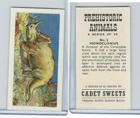 C0-0 Cadet Sweets, Prehistoric Animals, 1961, #2 Monoclonius