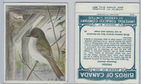 C2 Imperial Tobacco, Birds Of Canada, 1920's, #44 Phoebe
