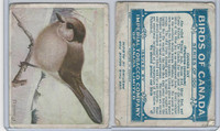 C2 Imperial Tobacco, Birds Of Canada, 1920's, #47 Canada Jay