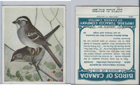 C2 Imperial Tobacco, Birds Of Canada, 1920's, #62 White Throat Sparrow