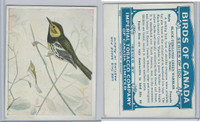 C2 Imperial Tobacco, Birds Of Canada, 1920's, #83 BT Green Warbler