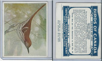 C2 Imperial Tobacco, Birds Of Canada, 1920's, #88 Brown Thrasher