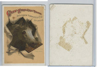 N Card, Dausman Tobacco, Horse Head, 1880's