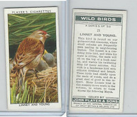 P72-142 Player, Wild Birds, 1932, #21 Linnet and Young