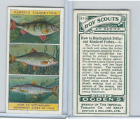 O2-94 Ogdens, Boy Scouts, 1914, #210 Distinguish Fish